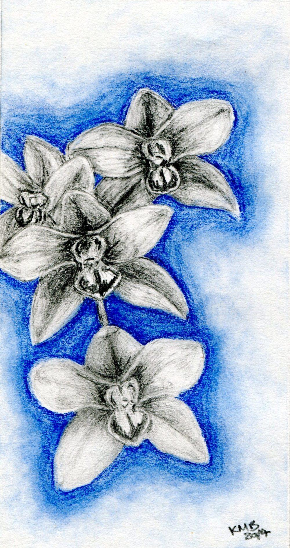 MacBean, Kate    52 Orchid, Mixed media.