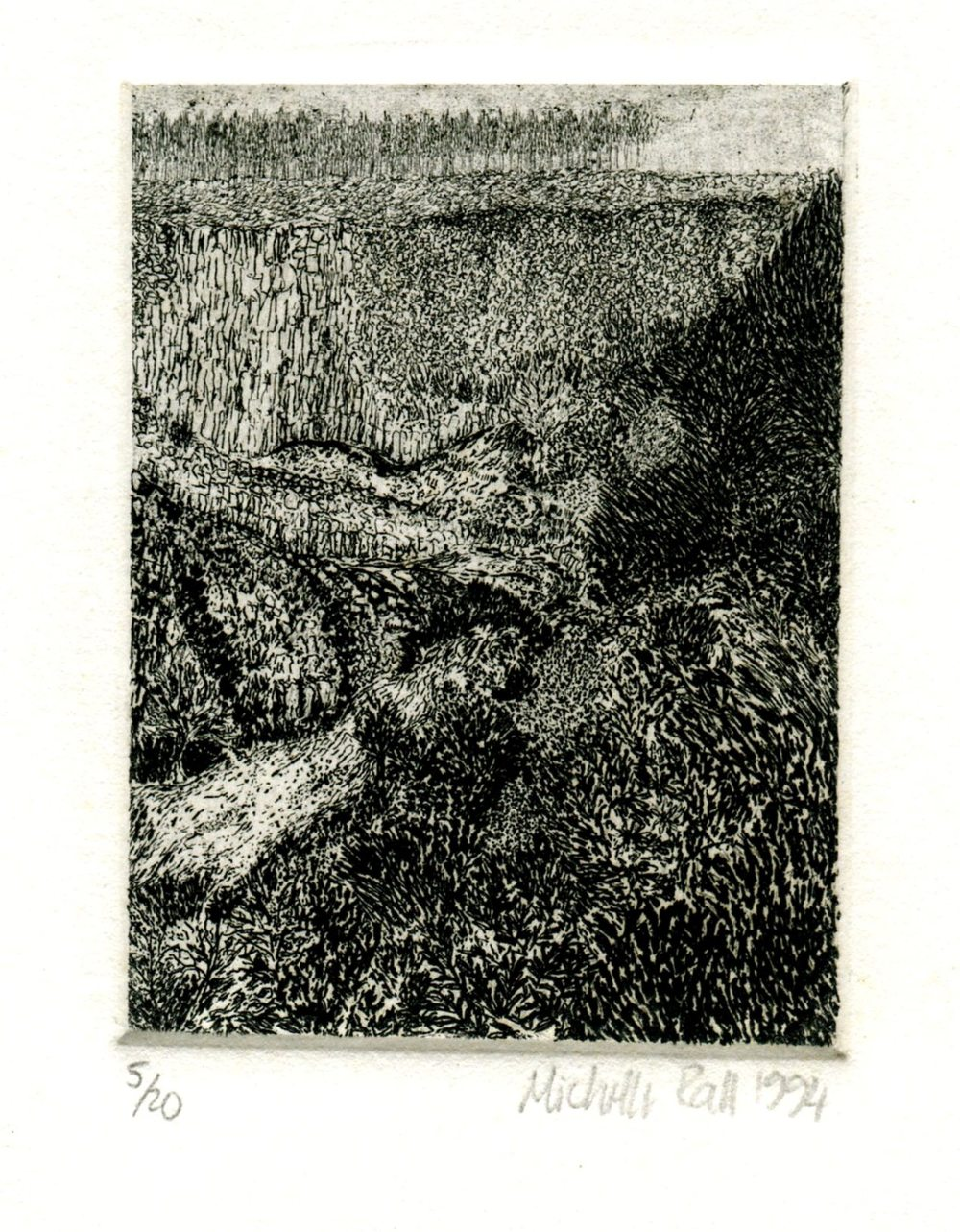 Rall, Michelle  69b Near Storms River, Etching.