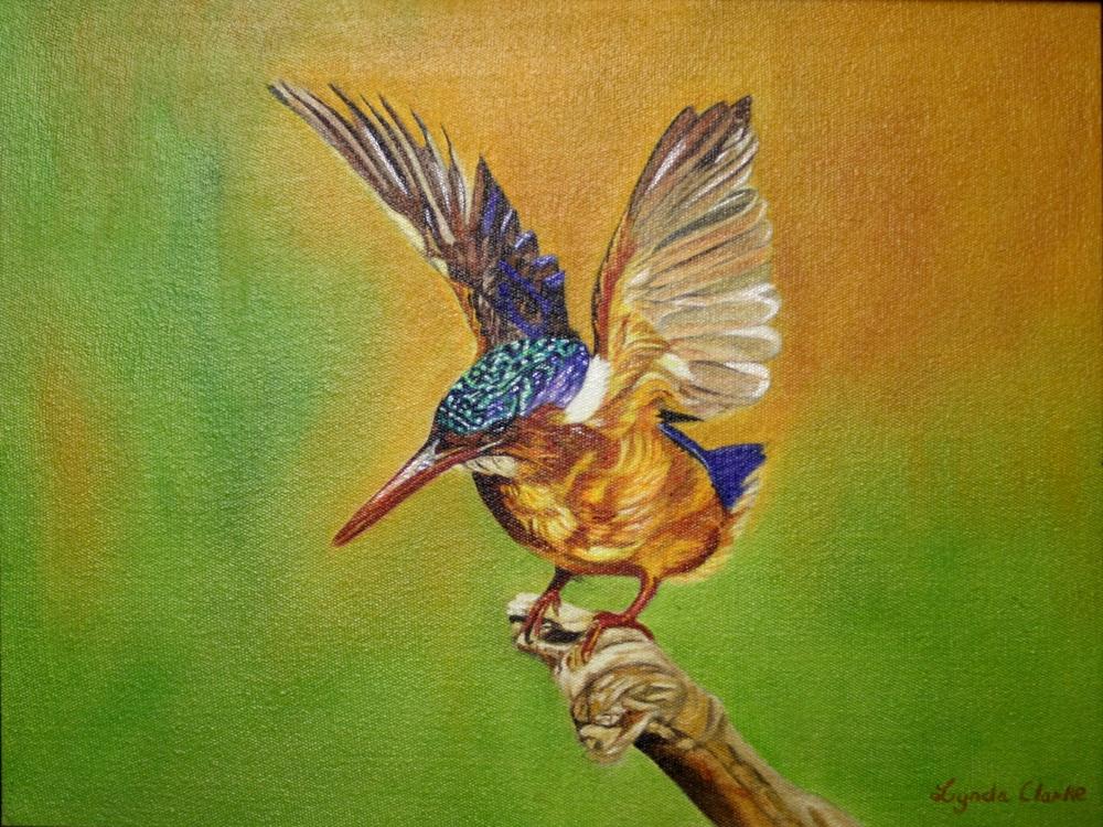 27 Buchanan-Clarke, Lynda-Kingfisher,Oil on canvass (2).JPG