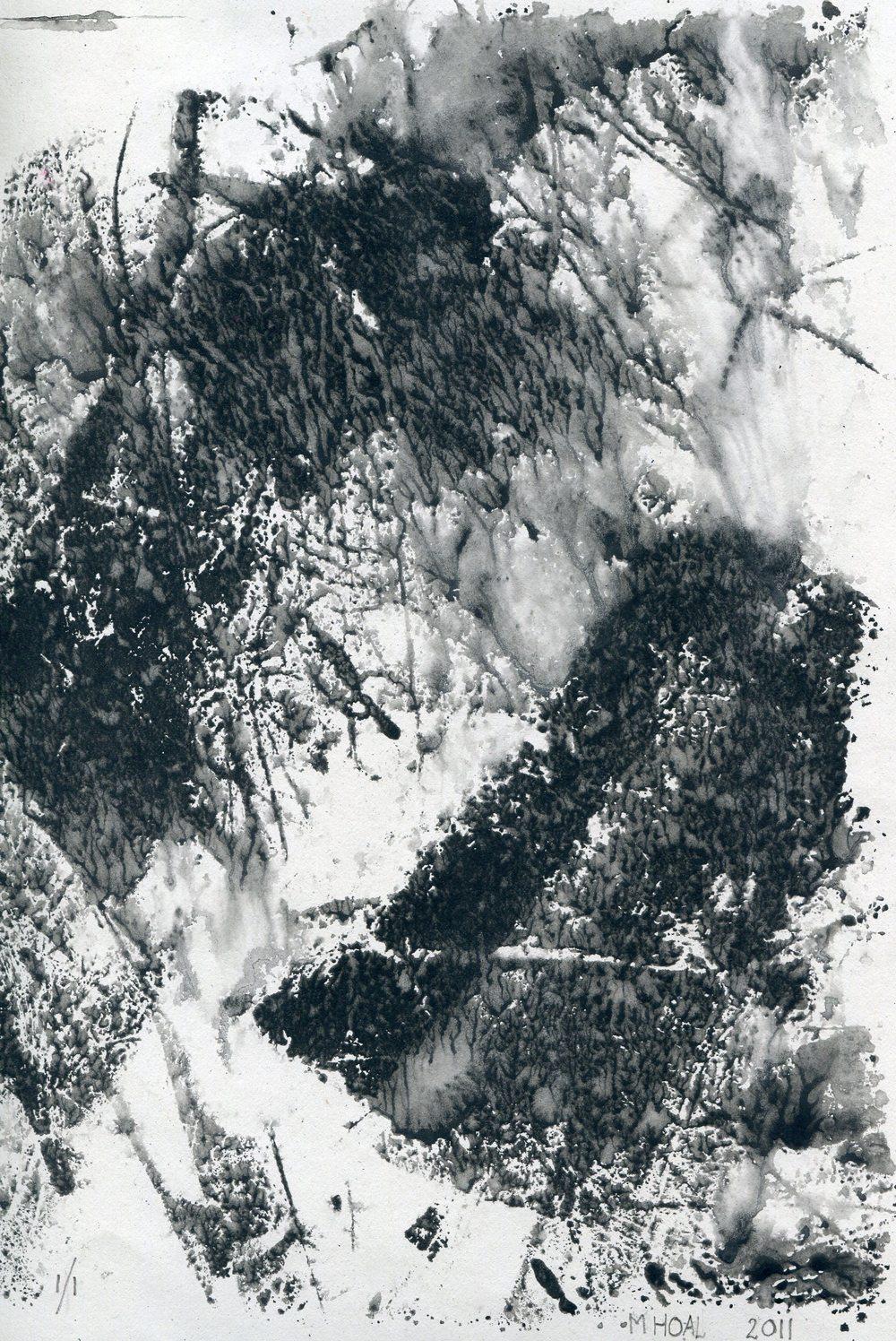 47b Hoal, Margaret- Foliage, Monoprint.jpg