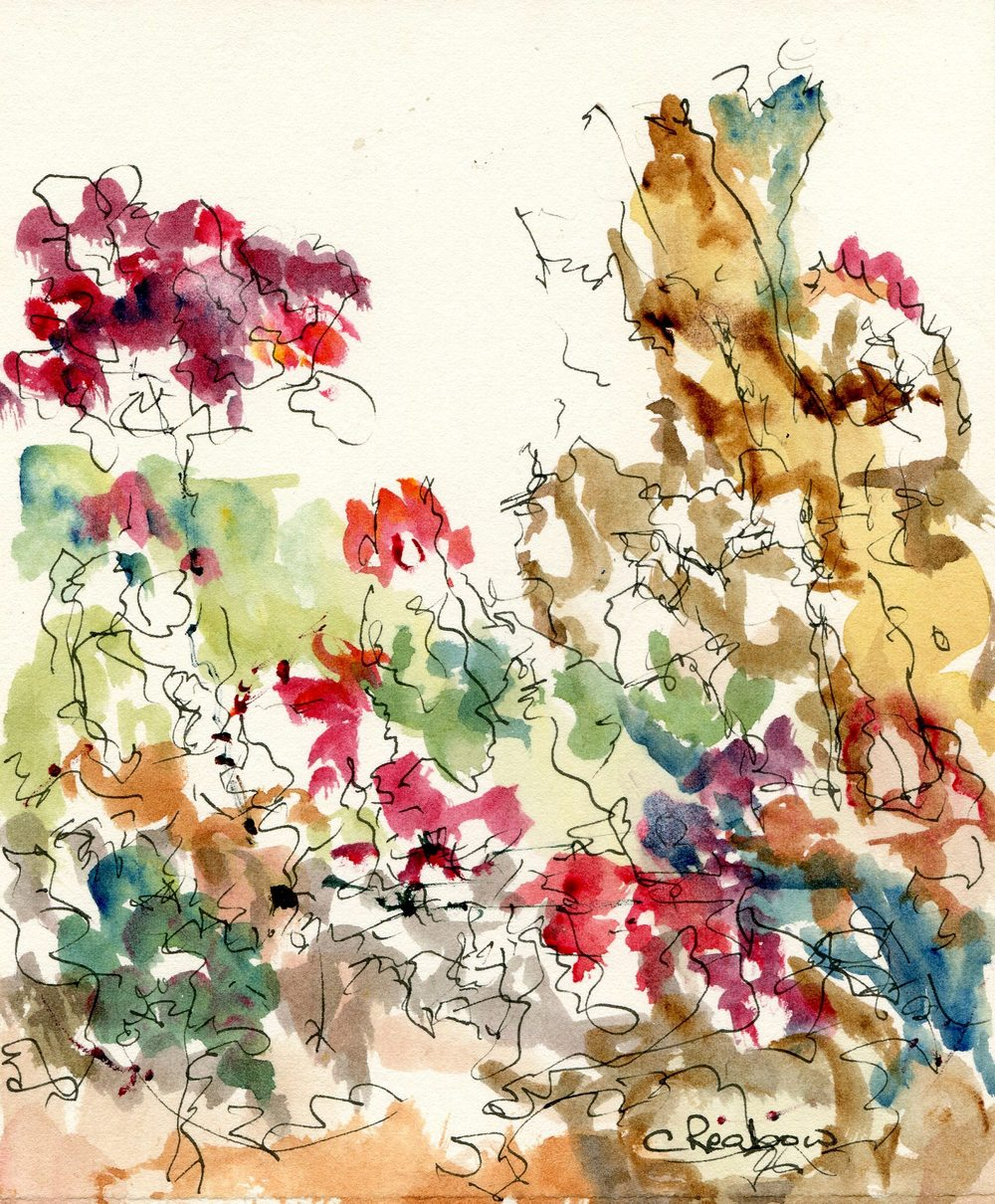 60c Reabow,Chris- Floral Study III, Watercolour and Ink.jpg