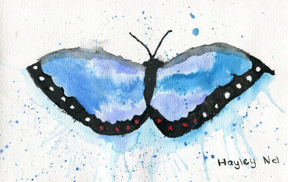 78a Nel, Hayley - Butterfly Shadow, Watercolour..jpg