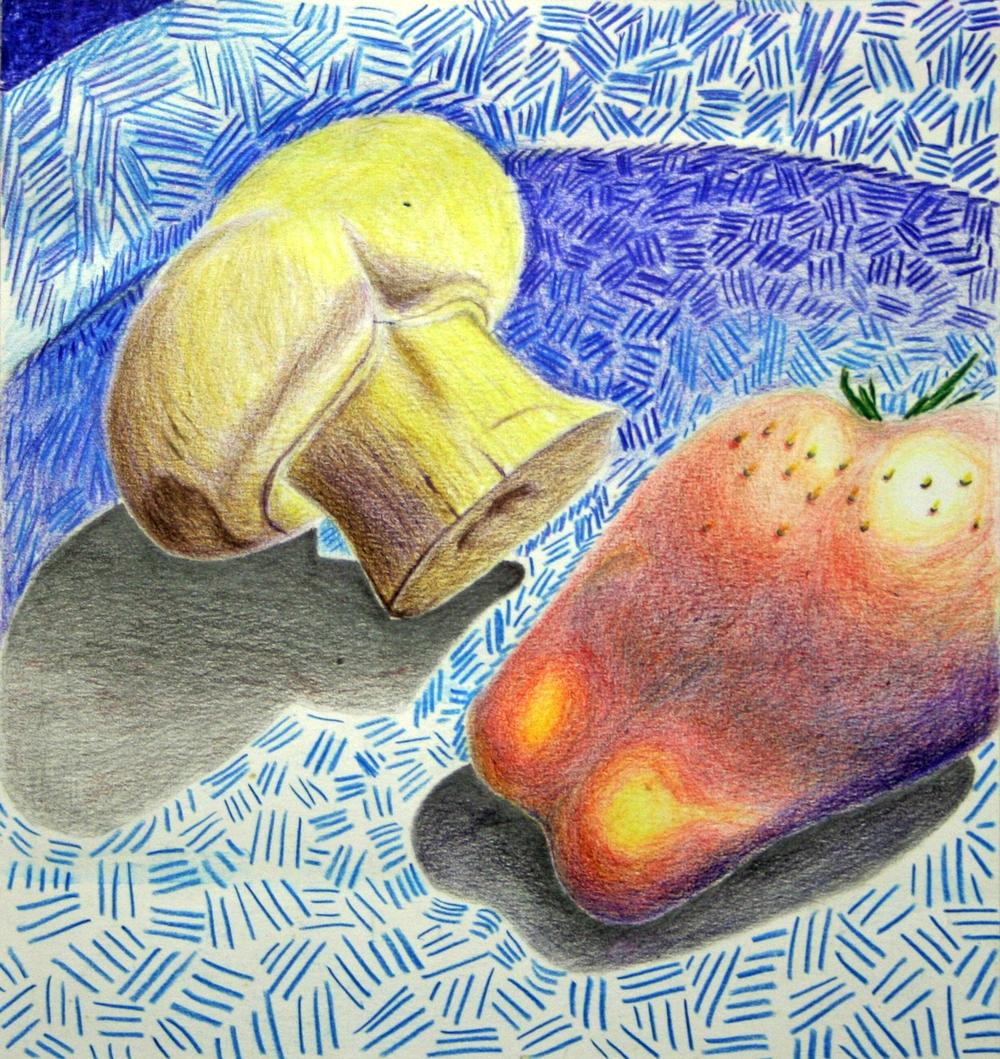 75 Joubert, Leonie- Still-Life with Mushroom, Coloured Pencil crayon.JPG