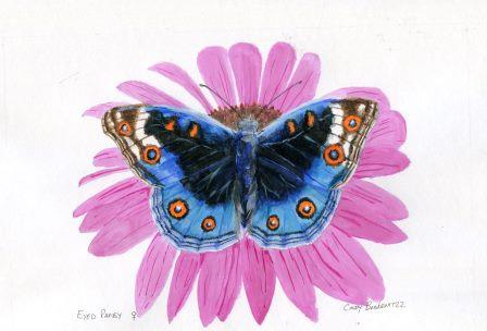 66c Bonkewitzz, Cindy - Eyed Pansy Butterfly,Acrylic on paper.jpg