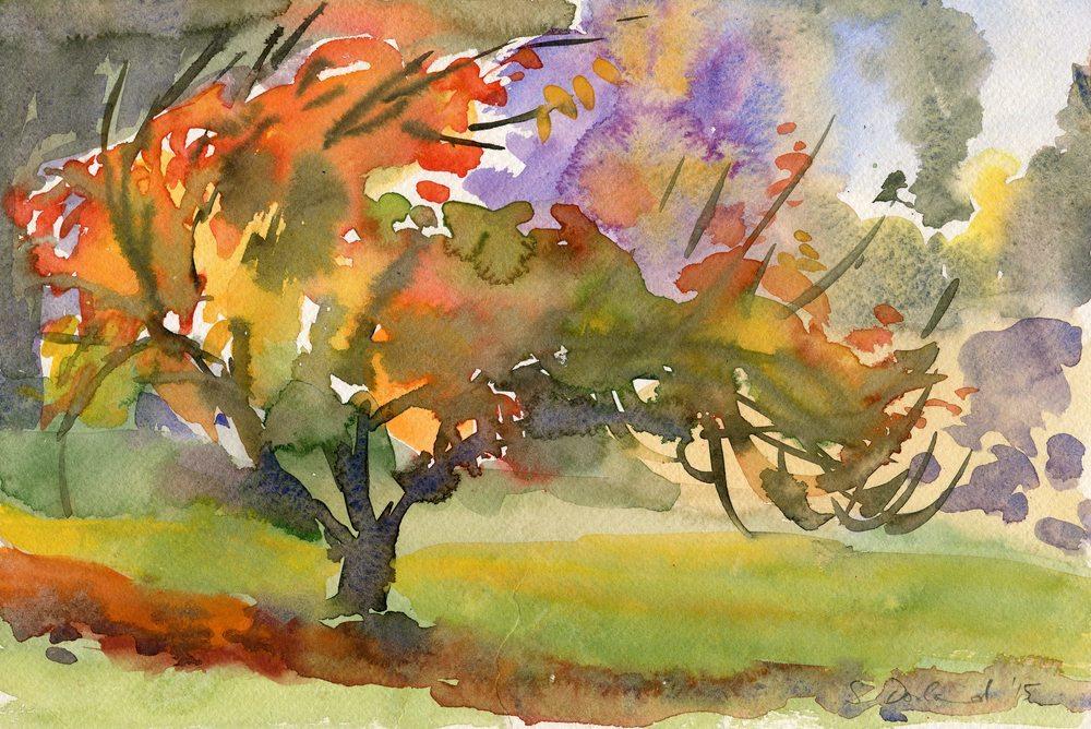 99 Osborne, Saskia - Cherry Tree, Watercolour.jpg