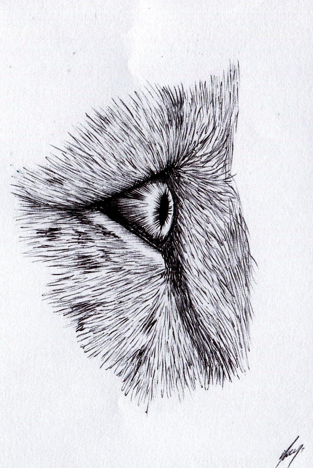 74b Paul Murray, The Eye, Ballpoint pen on paper