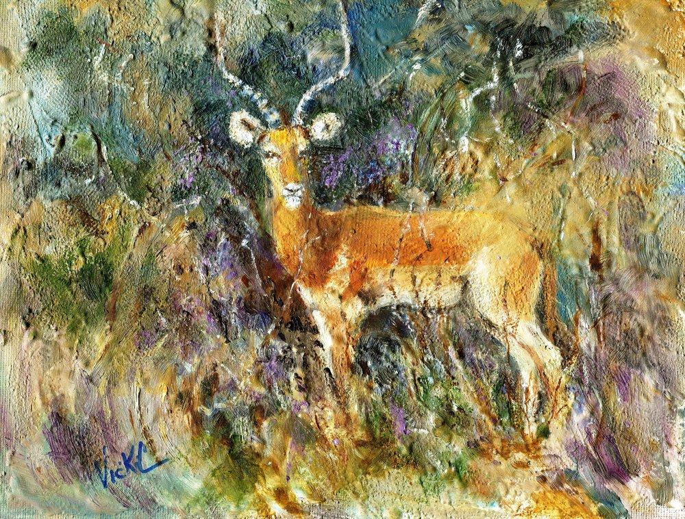 75b Vicki Cressey, Impala, Oil on canvas