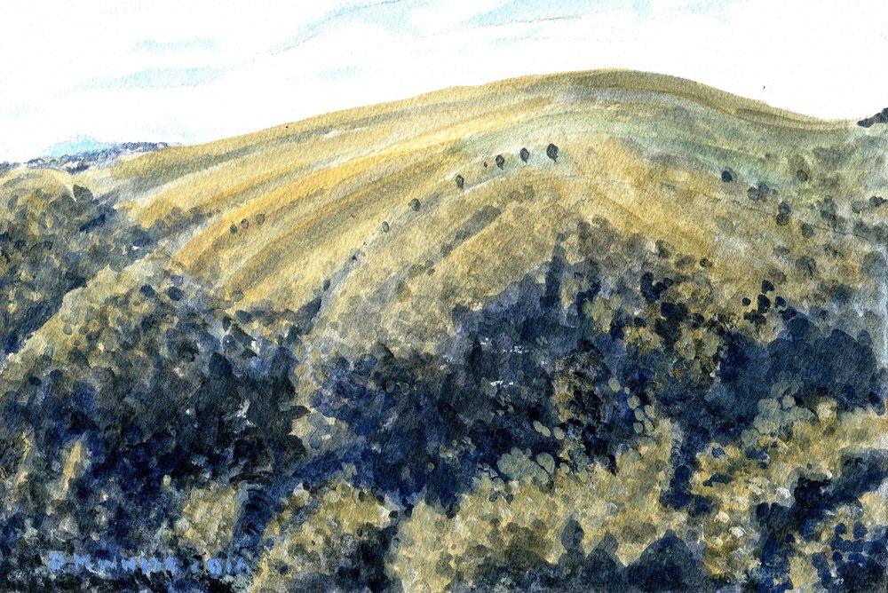 81c Don White, View near Nkandla, Acrylic on paper