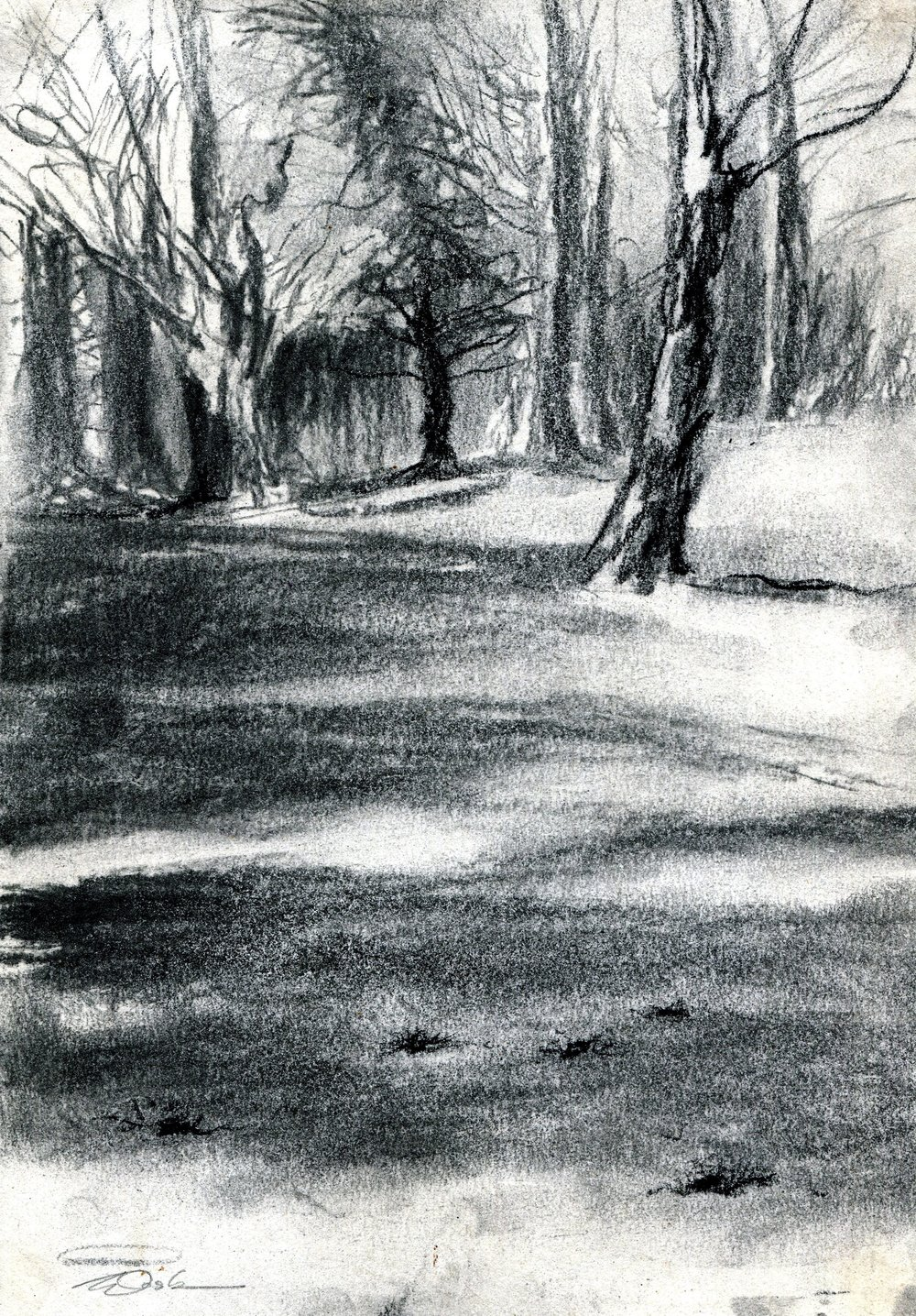 88a Saskia Osborne, Winter 1, Charcoal & conte on paper