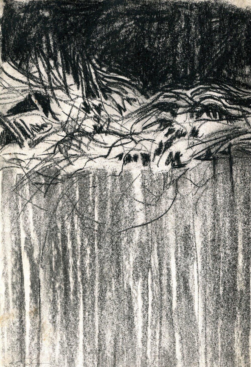 88b Saskia Osborne, Winter 2, Charcoal & conte on paper