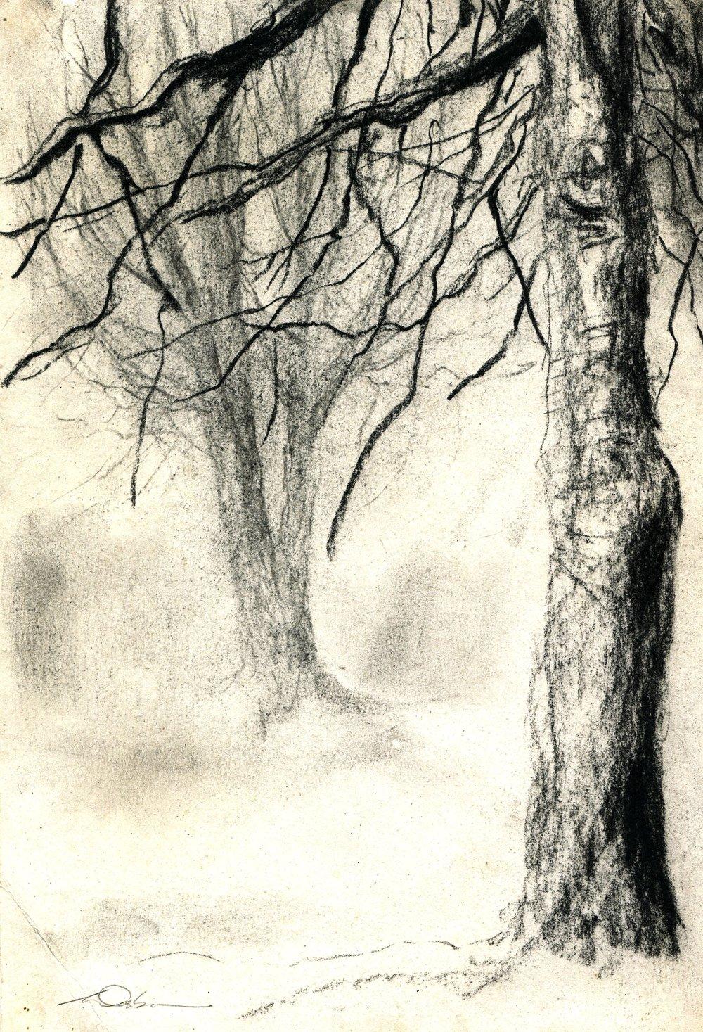 88c Saskia Osborne, Winter 3, Charcoal & conte on paper