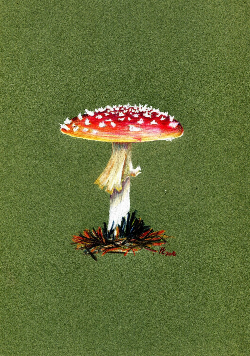 94a Maike Claussen,  Amanita Muscaria, Coloured pencil on paper