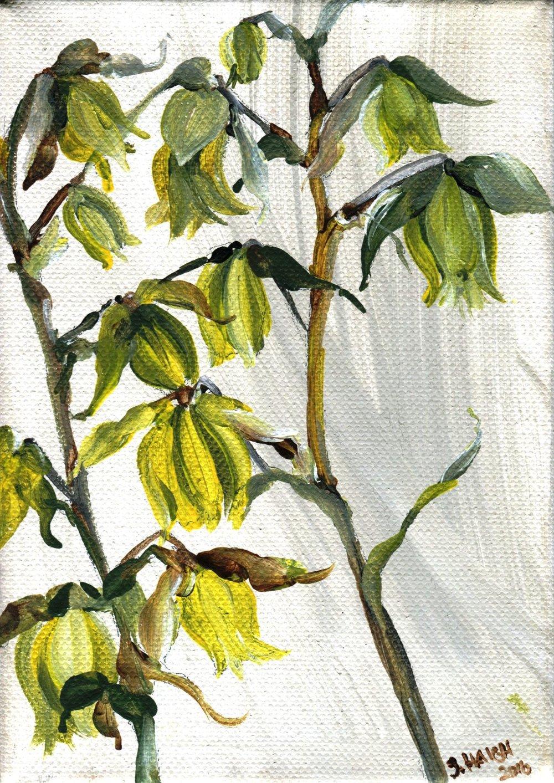 47a Sally Haigh,  Grassland Series I,  Acrylic on canvas
