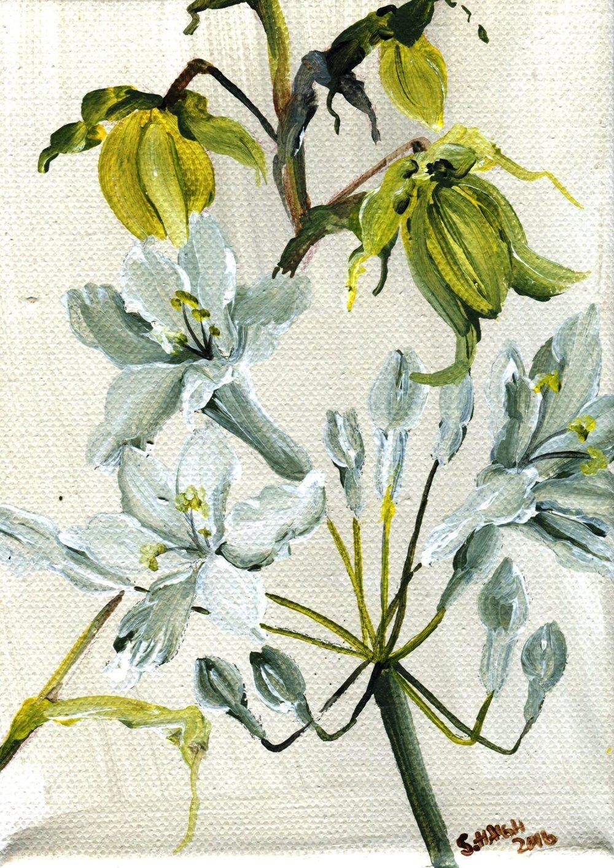 47b Sally Haigh, Grassland Series 2, Acrylic on canvas