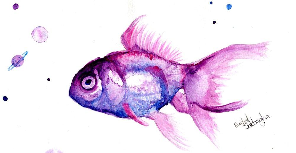 64b Rachel Sabbagh,  Goldfish, Watercolour on paper
