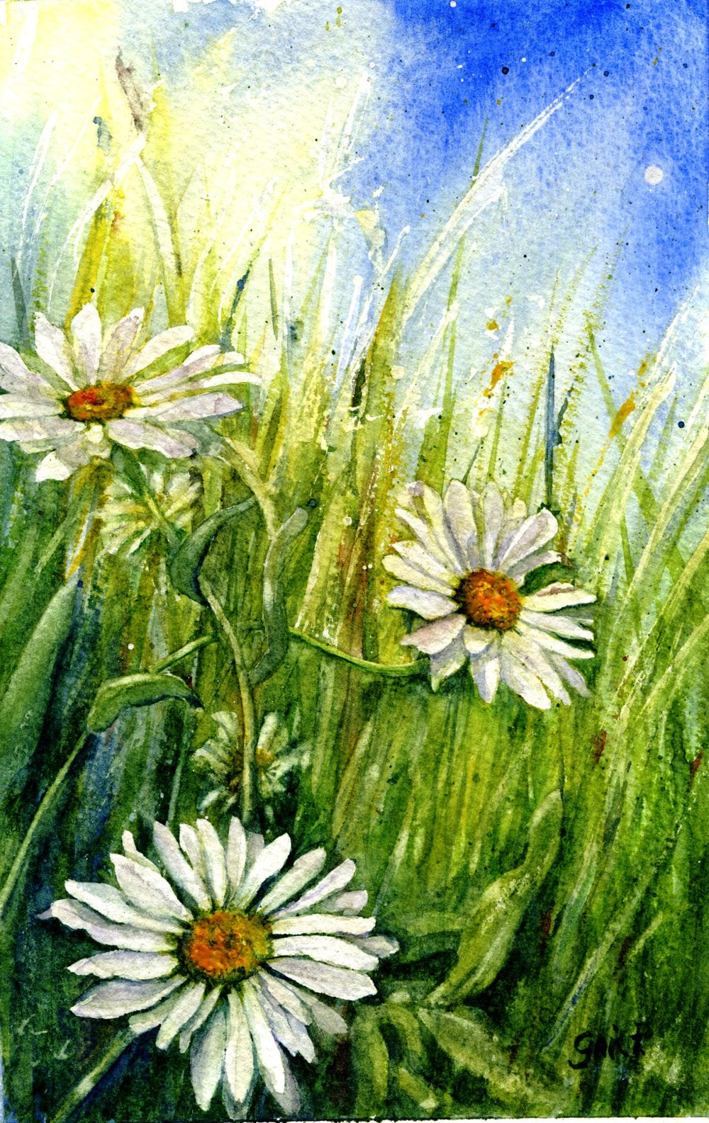 28d Gail Peckham, Daisies in the Wind, Watercolour on paper