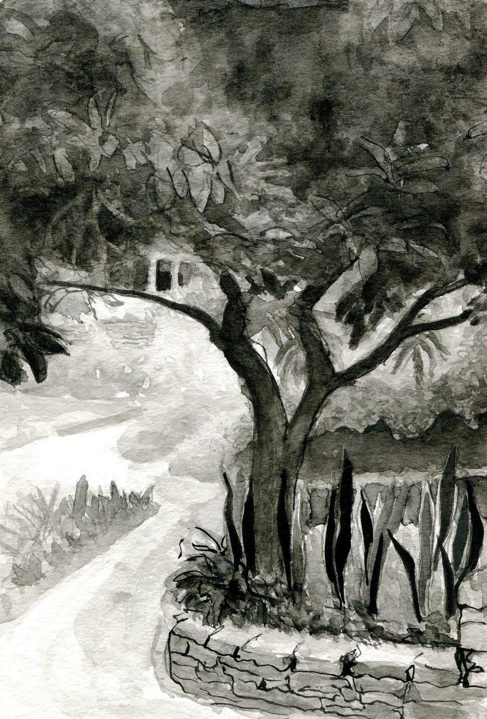 93a Jennie Milborrow, The Garden, Brush & ink on paper