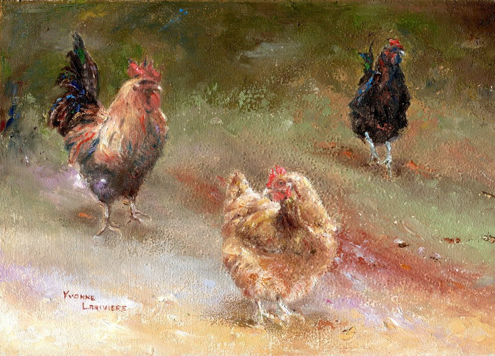 13A YVONNE LARIVIERE, CHICKENS, OIL ON BOARD