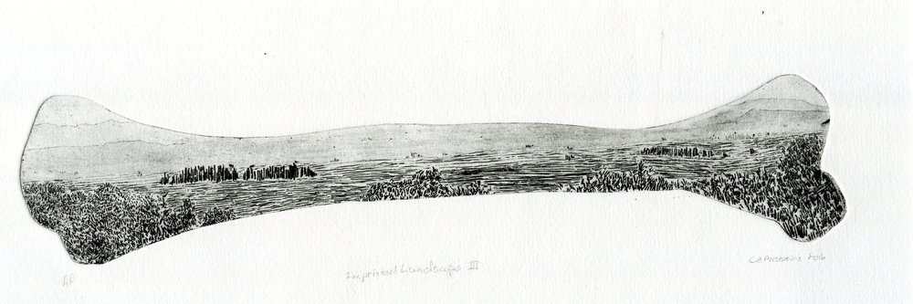 82C ELOFF PRETORIUS, IMPRINTED LANDSCAPE III, ETCHING ON PAPER