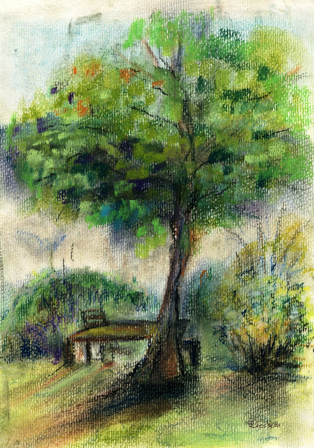 85B LIESBETH GROENEWALD, TREE IN THE GARDEN, PASTEL ON PAPER