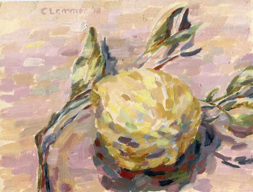 02A  Corina Lemmer  A lemon for Jinny  oil on board