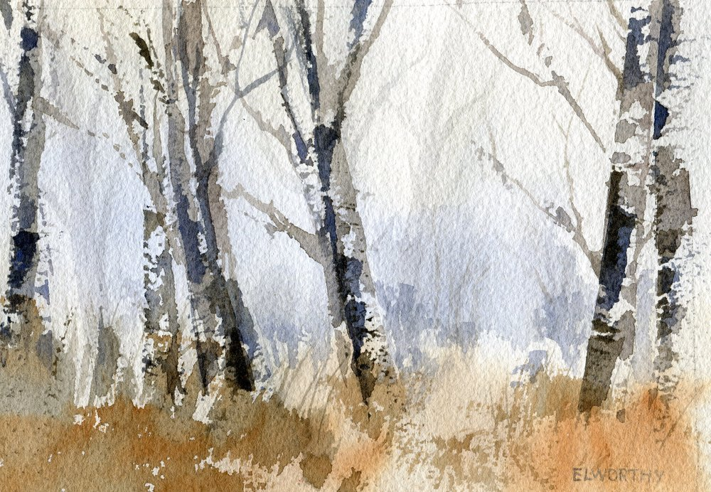 04B  Jean Elworthy  Silver poplars  watercolour on paper