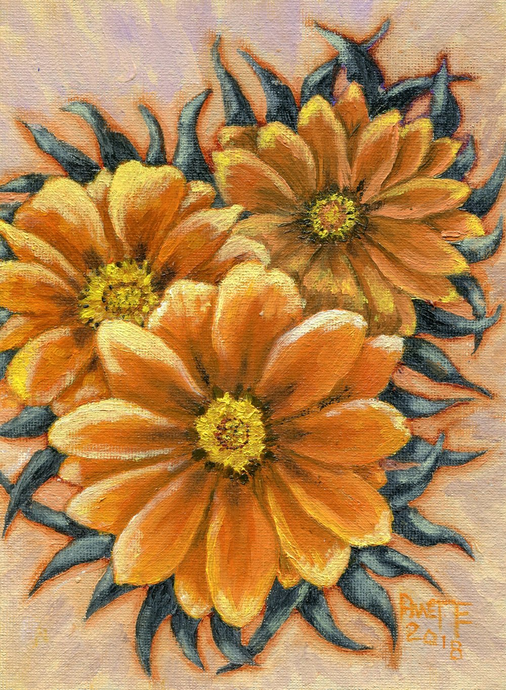 08B  Annette Farland  Gazania with compliments  oil on canvas panel