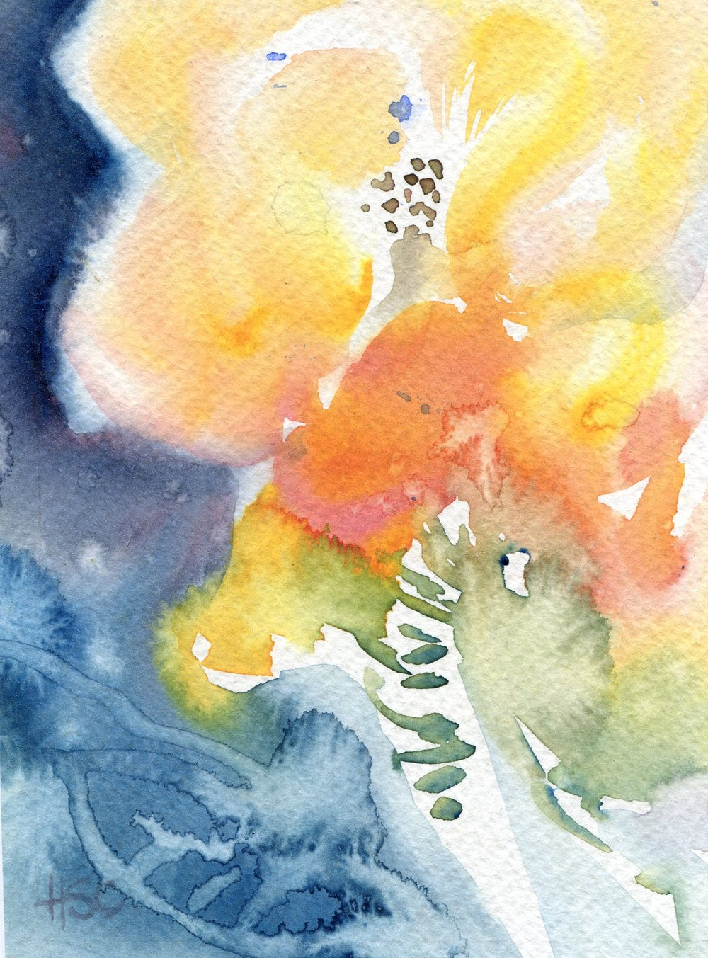 19A  Hermine Coleman  Flower  watercolour on paper