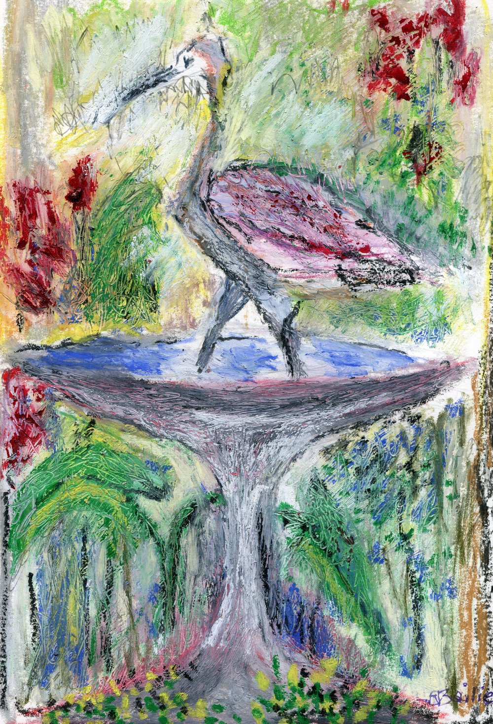 40c  Jean Stewart Bailie  Ibis refreshed 3  oil pastel on paper