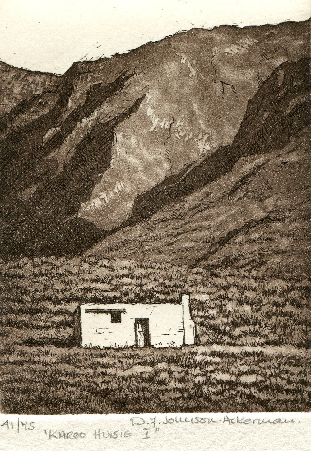 43b  Diane Johnson-Ackerman  Karoo huisie I  etching on paper