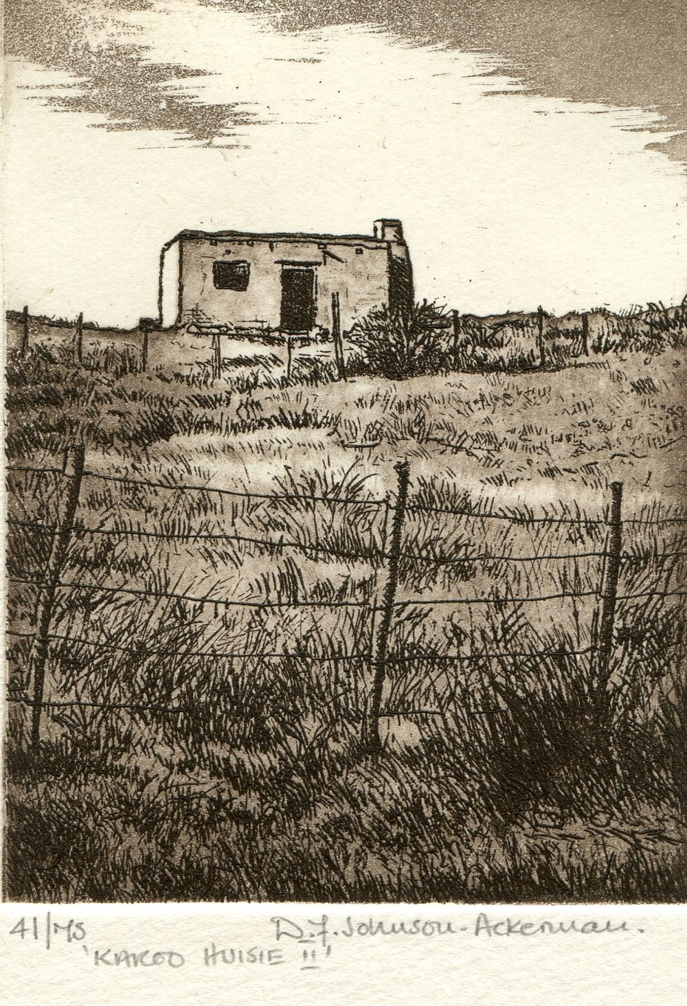 43a  Diane Johnson-Ackerman  Karoo huisie II  etching on paper