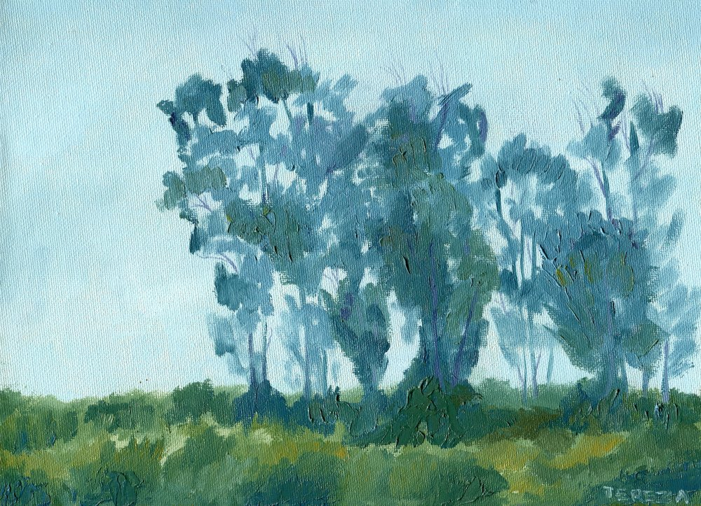 93a  Tereza Harling  Blue Gums  oil on canvas