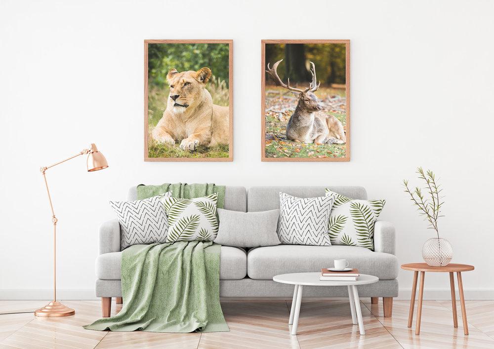 Dyr-Stue-Løve+Kronhjort-Plakatshop-Web-1.jpg