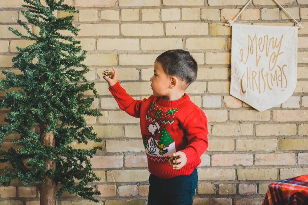 holidayminisessions_costudiobismarck-11.jpg