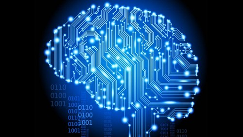 human supercomputer.jpg