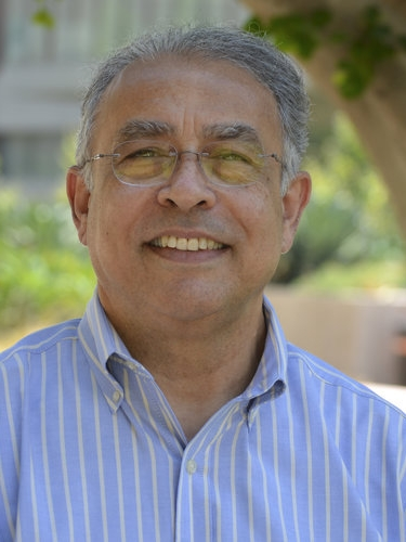 Yousef Bozorgnia   Professor EARTHQUAKE Engineering