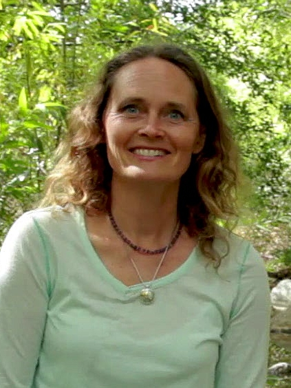Jennifer A. Jay   Professor Environmental Engineering
