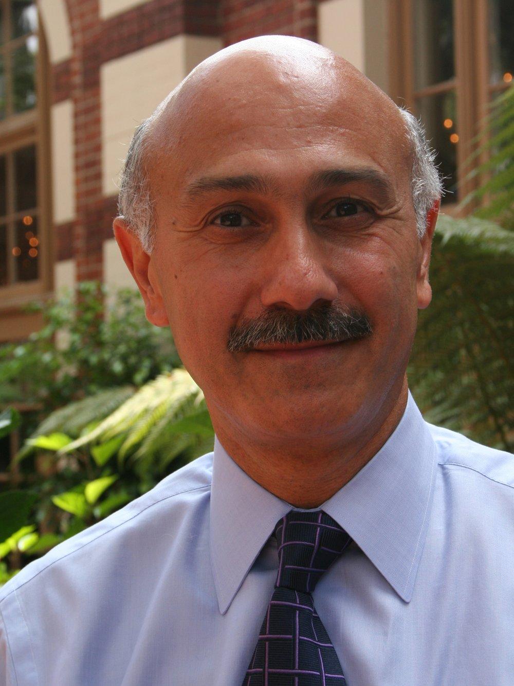 Naj Meshkati   professor systems ENGINEERING
