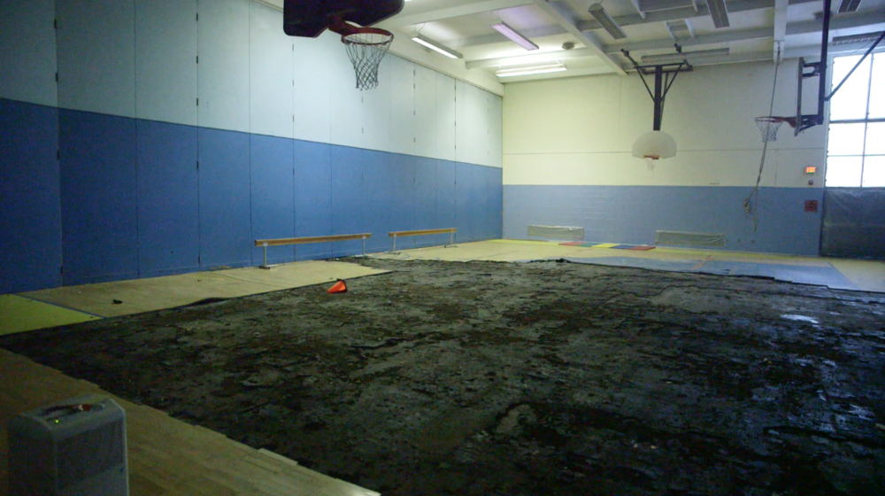 Gymnasium, Courtesy of Go Fund Me page.