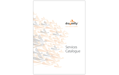Dragonfly Technologies Cybersecurity Consulting Services Catalogue