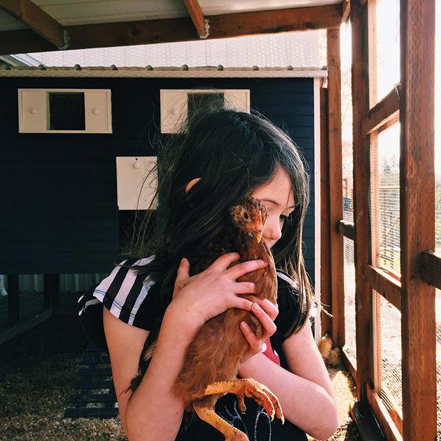 My chicken farmer ❤