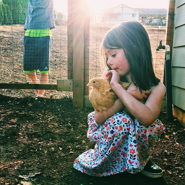 Dresses and chickens 😊