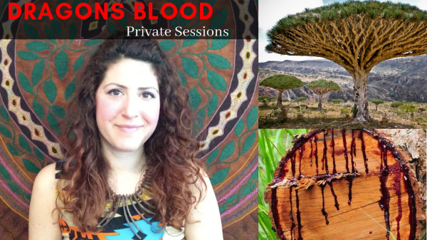 Private Dragon's Blood/Soul Retrieval Sessions - I'm also offering private Dragon's Blood/Soul Retrieval Ceremonies by private booking. If you're looking for deep clearing and transformation this is the right work for you! In this private healing session, we go deep into releasing physical, emotional, and mental blocks with the help of the Dragon's Blood plant. After the completion of the purgative ceremony I support you with a 1:1 shamanic healing session where we go deep to the root of unwanted patterns and up-level your entire vibration. Each session includes a unique-to-you combination of soul retrieval (wholeness here we come!), energy clearing (say goodbye to those dirty demons!), Chakra balancing (so you can come into your fullest alignment), past life healing (understand the lessons and erase negative, repetitious patterns) & ancestral healing (so you and your family can be set free from what's unconsciously been holding you back from positive growth!Book your private session HERE