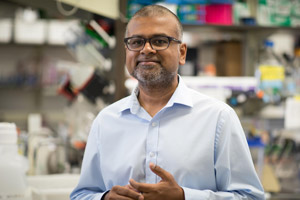 Kartik Chandran, Ph.D.