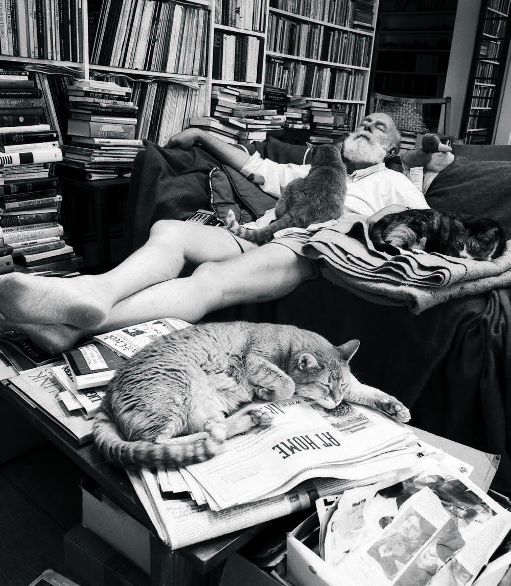 edward gorey WITH CATS - he would not have more than six cats. seven is too many he would say.