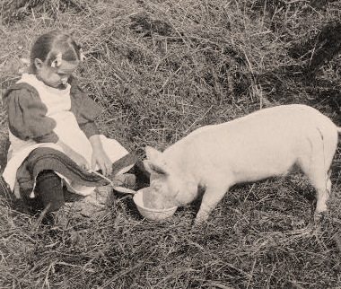 girl-shares-with-pig-cute.jpg