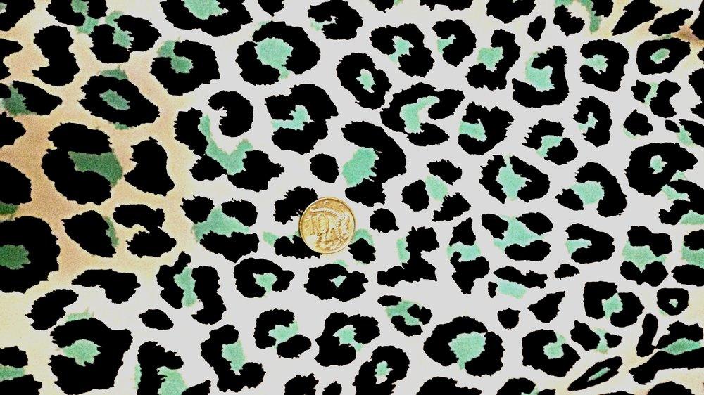 Snow Leopard (6 pairs)