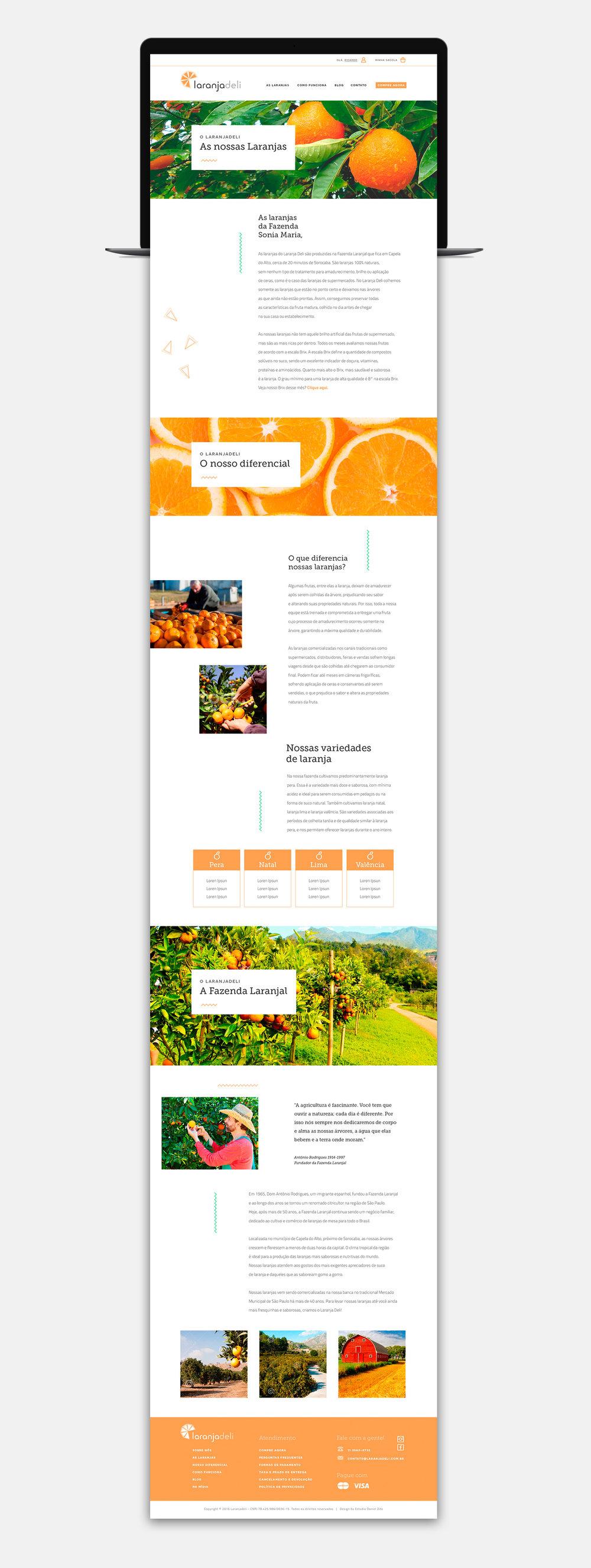 site2.jpg