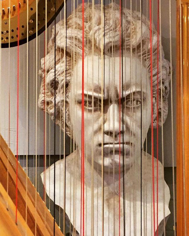 👺 #musicalinstrumentrepair