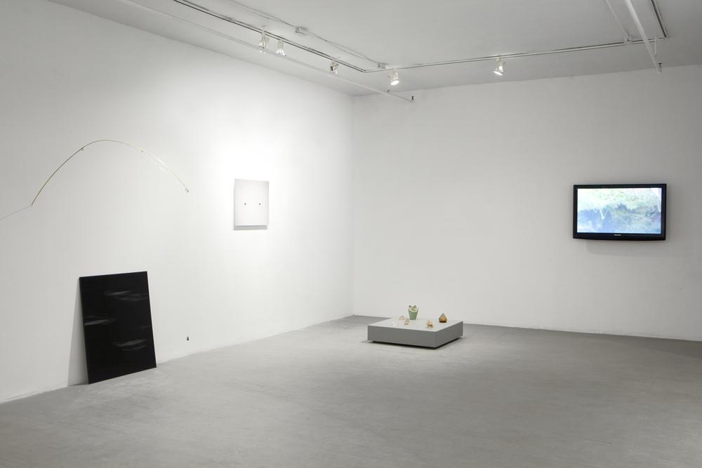 à l'ombre de mouche,2014, installation view at Les Territoires